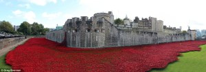 1414628839094_wps_8_Tower_of_London_Poppies_c