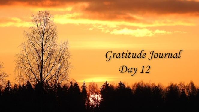 Gratitude12